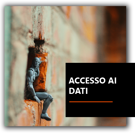 Accesso ai dati - Agenzia Marketing Venezia Padova e Treviso | Neuromarketing | Coaching | Leadership | BrioWeb