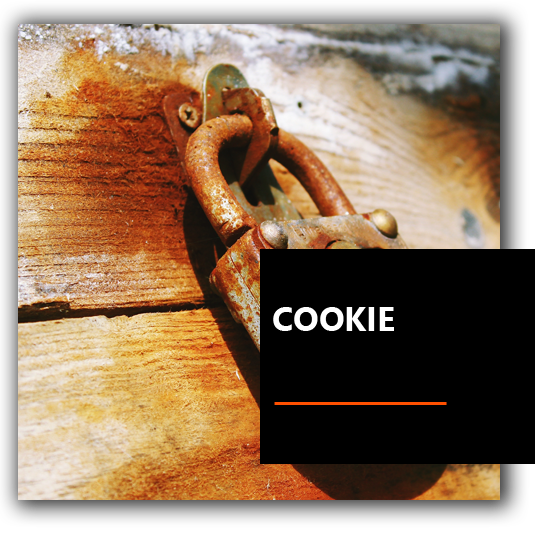 Cookie - Agenzia Marketing Venezia Padova e Treviso | Neuromarketing | Coaching | Leadership | BrioWeb