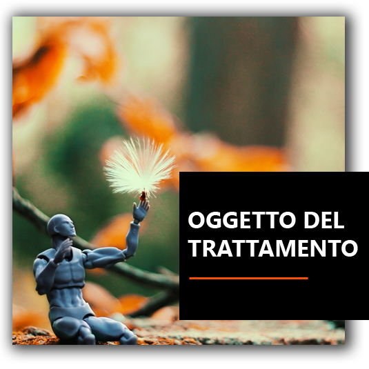 Oggetto trattamento - Agenzia Marketing Venezia Padova e Treviso | Neuromarketing | Coaching | Leadership | BrioWeb